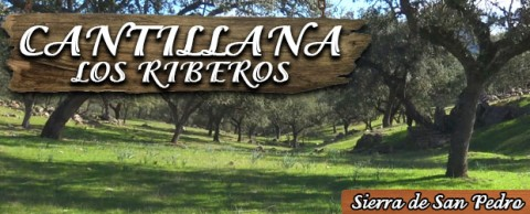 Finca Cantillana – Los Riberos