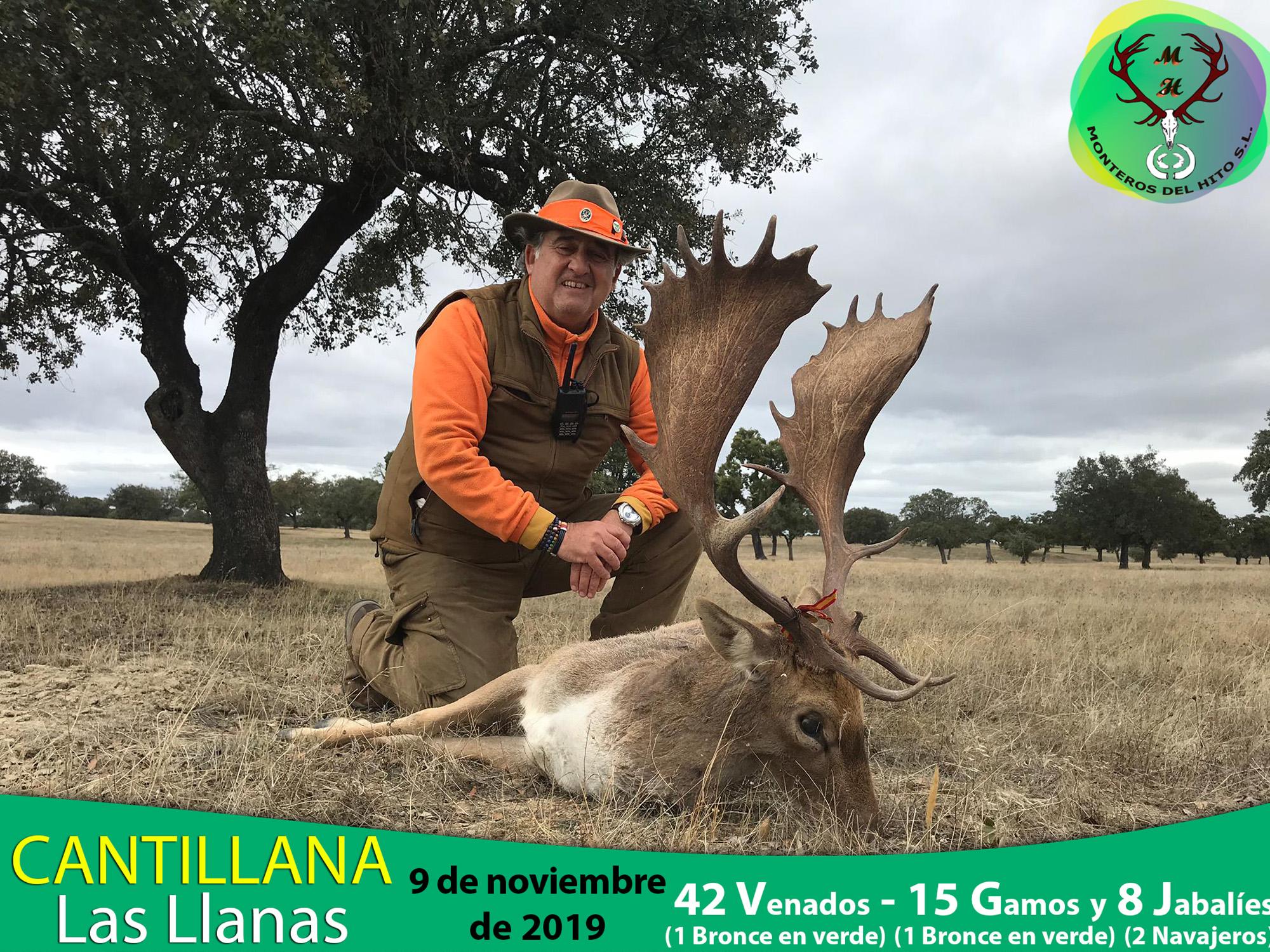Galería Cantillana – Las Llanas 2019