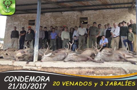 Galería Condemora 2017