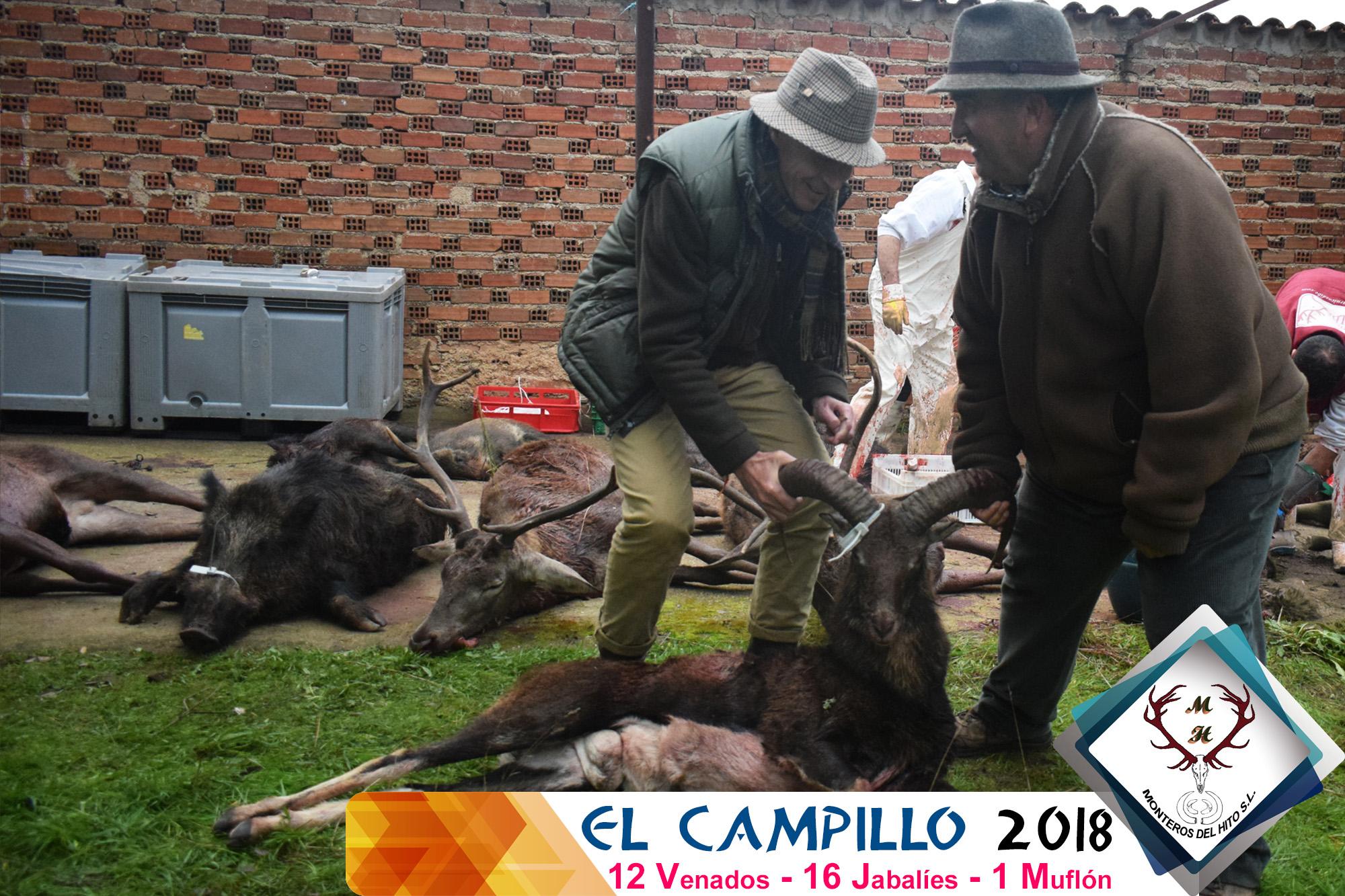 Galería El Campillo – El Encorchao 2018