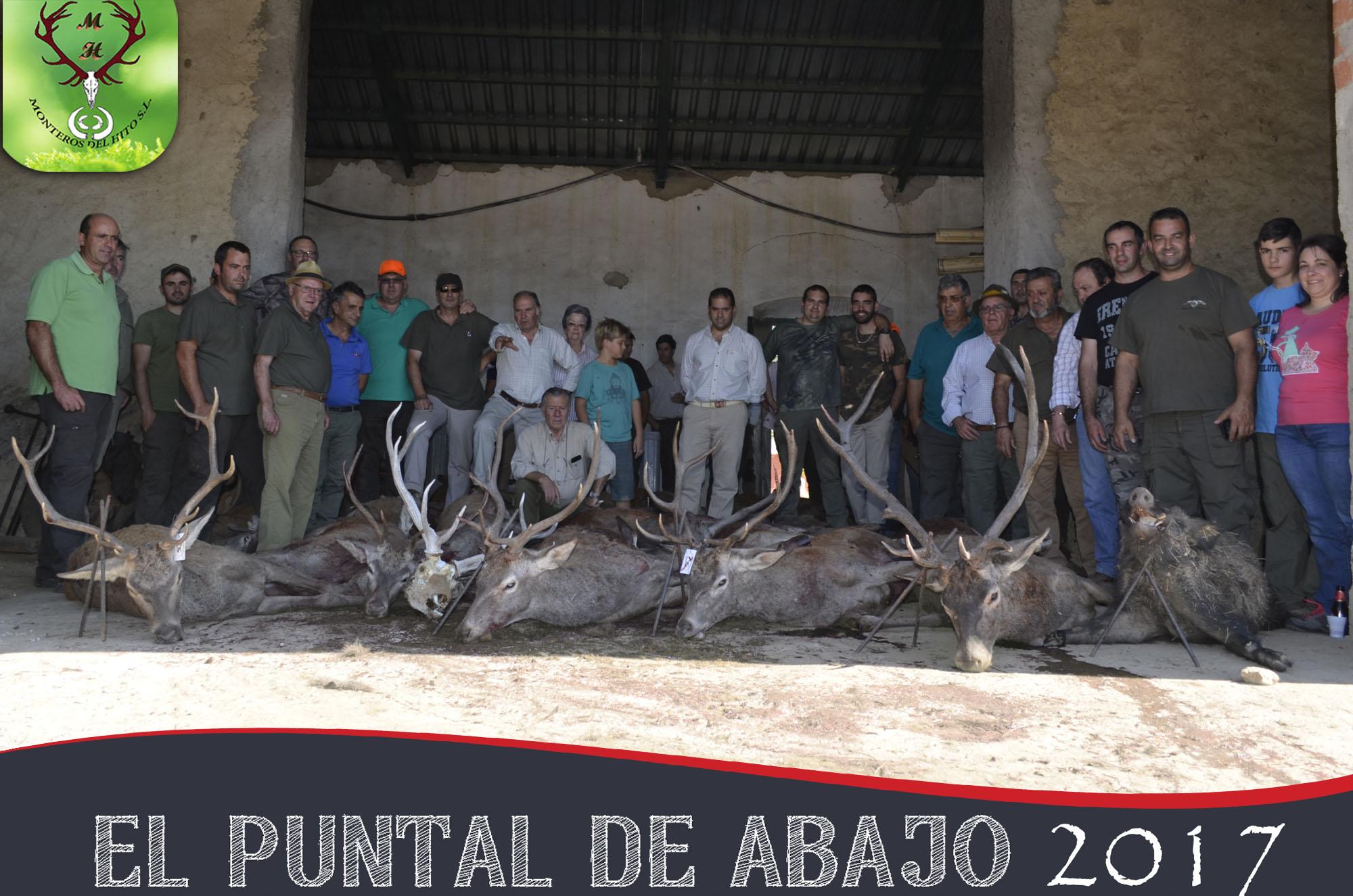 Galería El Puntal 2017