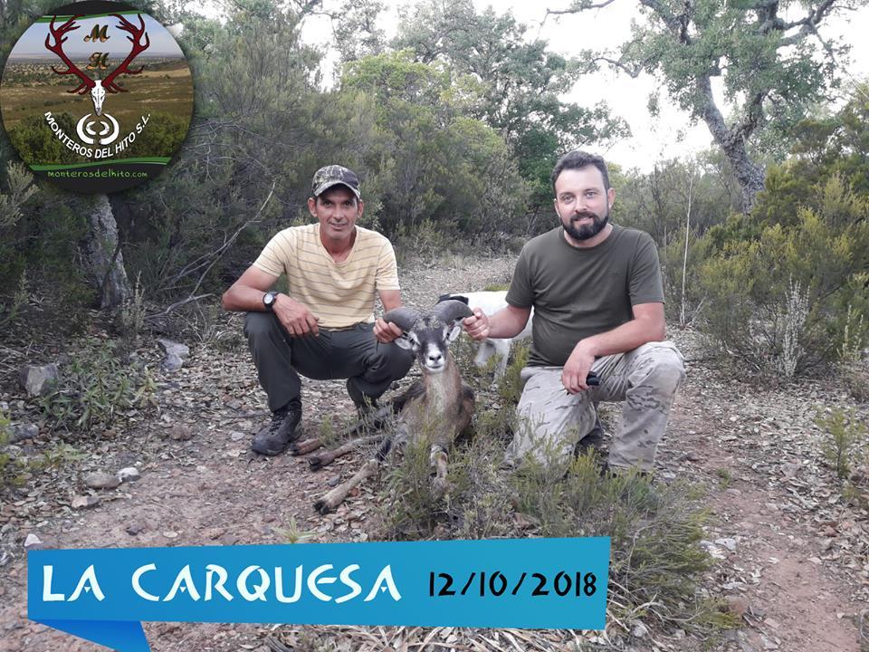 Galería La Carquesa 2018