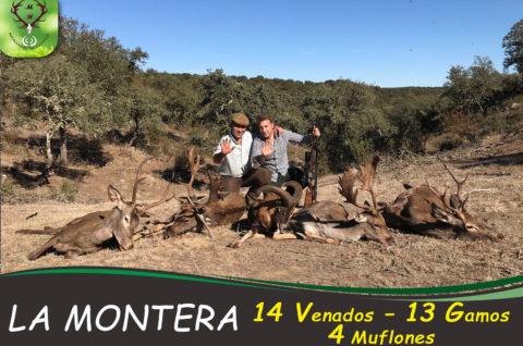 Galería La Montera 2017