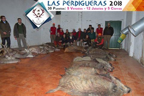 Galería Las Perdigueras 2018