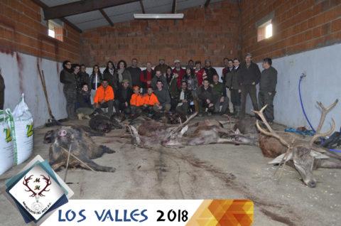 Galería Los Valles – La Solana 2018