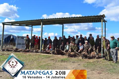Galería Matapegas 2018