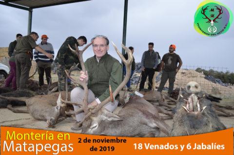 Galería Matapegas 2019