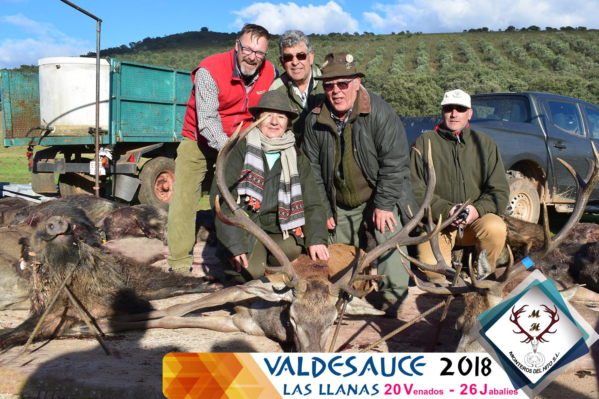 Galería Valdesauce – Las Llanas 2018