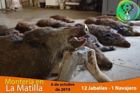 Galería La Matilla – Riveros 2019