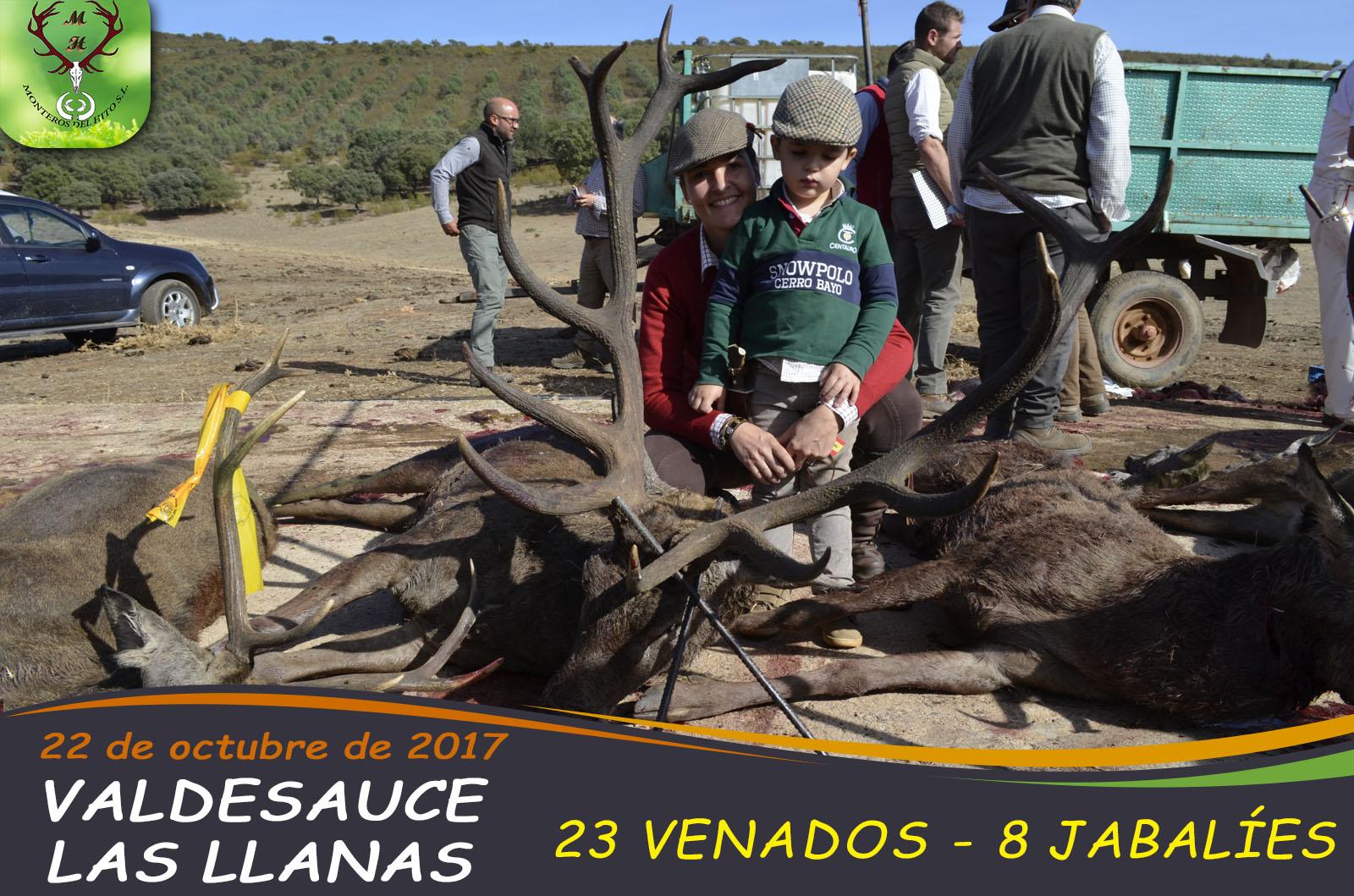 Galería Valdesauce – Las Llanas 2017