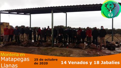 Galería Matapegas-Llanas 2020
